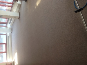 after Carpet cleaning Telford